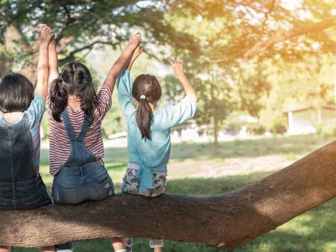 Non-Parent Custody